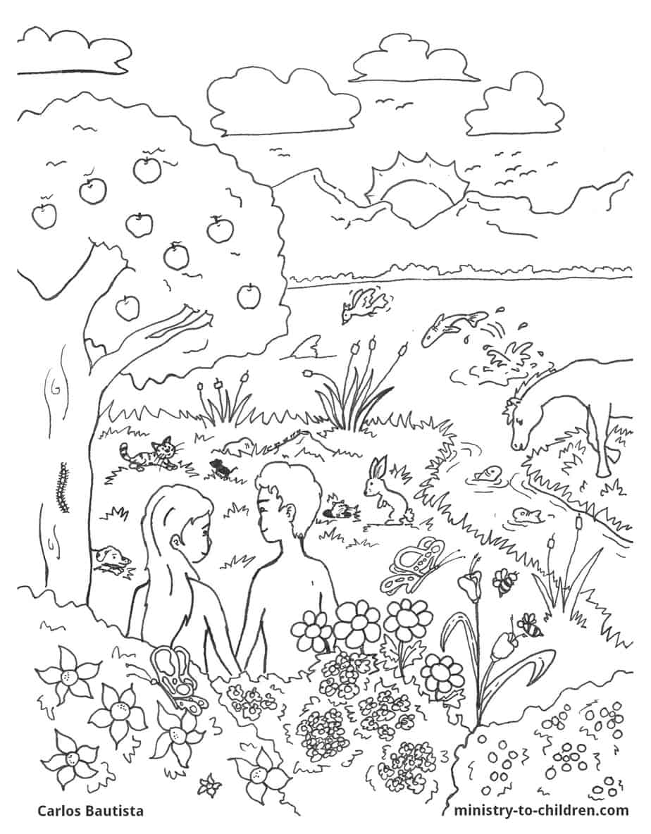 Creation Bible Coloring Page free download