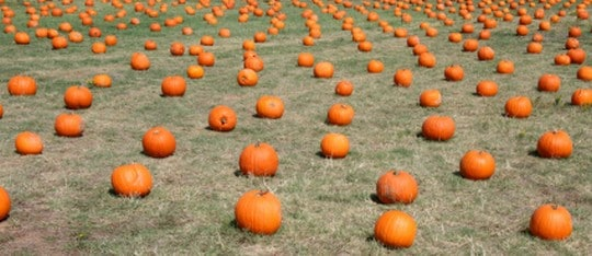 Ideas for Fall Festival at Church